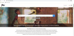 Federacja Bibliotek Cyfrowych(link)